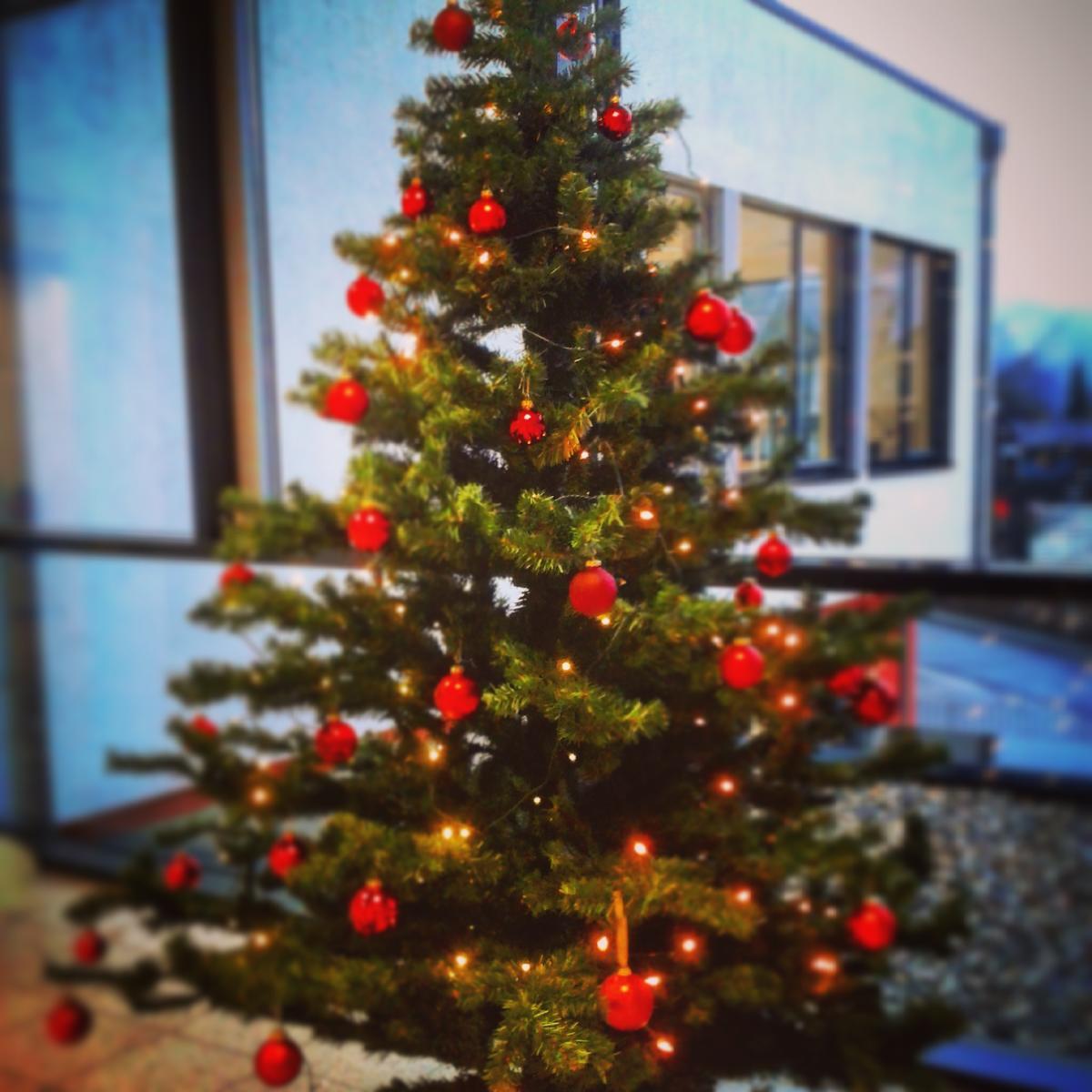 Weihnachtsbaum Rathaus 2015